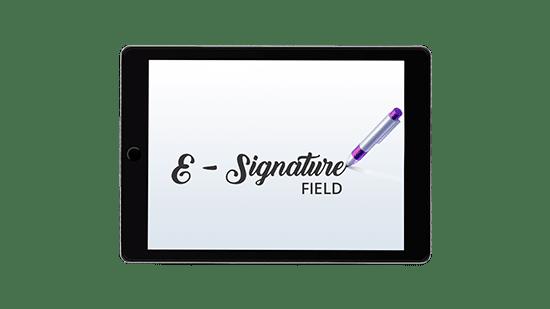 e signature field