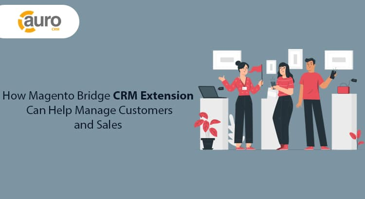 Magento CRM Extension