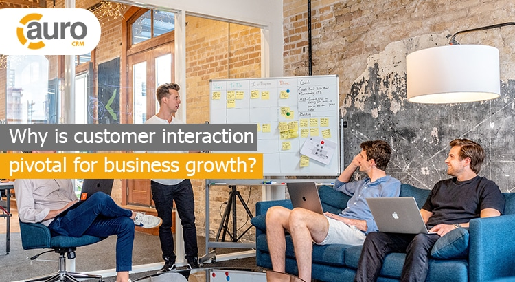Why is customer interaction pivotal for business growth?
